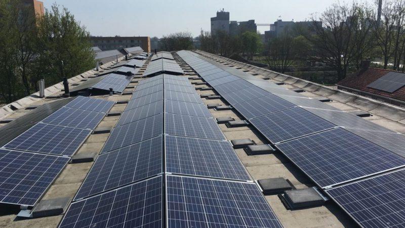 Wocozon feliciteert Zonmaat met plaatsen zonnepanelen op 10000ste woning